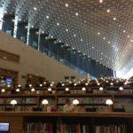 bibliotheek Eemhuis Sieneke de Rooij creatief schrijven